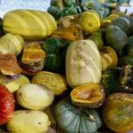 Les Petits Producteurs, l'alimentation locale et bio à portée de main !