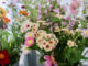 Ginger Flower, fleurs éco-responsables sur Liège
