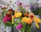 Fleurs bio et éco-responsable de Ginger Flower à Liège